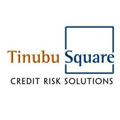 Tinubu Square 2013 Revenues Up 12%