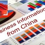 Business Info China300