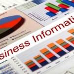 Business Info 300