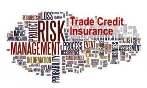 Trade Credit Insurance 300