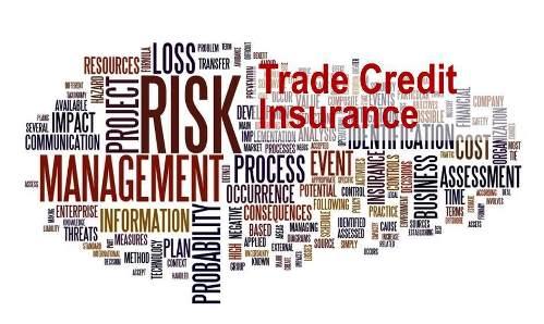 Credit Insurance Premium Grew 6.7% in 2018
