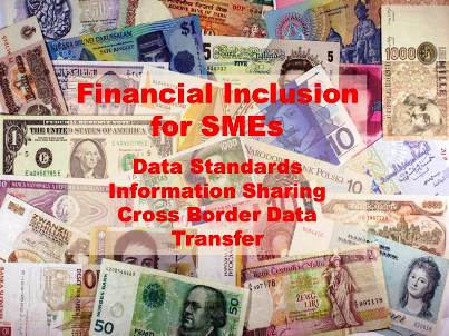 Financial Inclusion SMEs 300