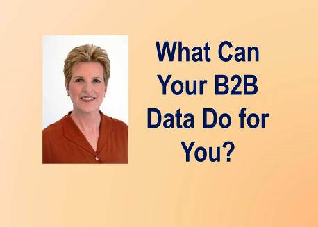 The Data Rage:  What Can Your B2B Data Do for You?