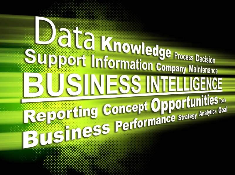 Business Intelligence Sales Set to Rise