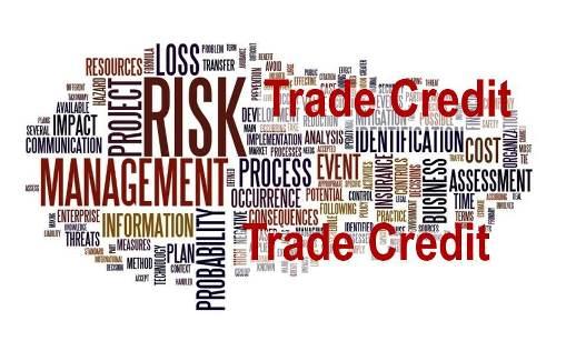 Trade Credit Risk Management