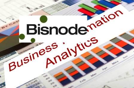 Business Information & Analytics BISNODE
