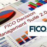 Business Information & Analytics FICO