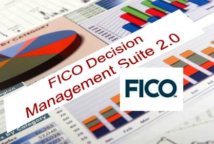 Business Information & Analytics FICO