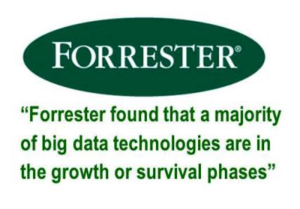Forrester on BIG DATA Growth