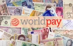 Worldpay – Technical Glitch Halts Payments to Customer Segments