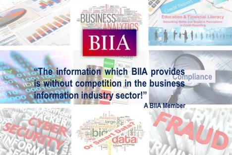 What Members Say about the Benefits of Being a Member of BIIA