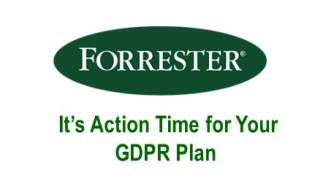 Forrester Research Brief: You Need an Action Plan for The GDPR