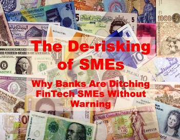 De-Risking SMEs:  Why Banks Are Ditching FinTech SMEs — Without Warning