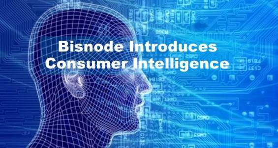 Bisnode Consumer Intelligence Transforms Management of Consumer Data