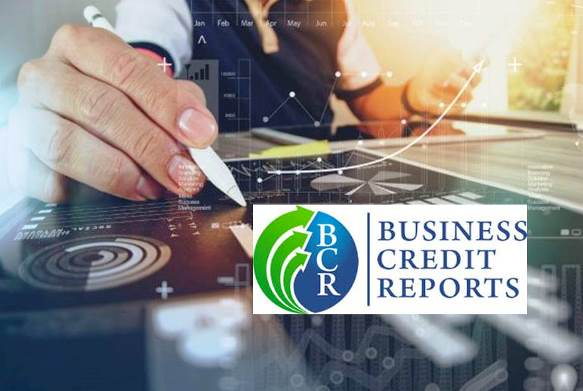 Business Credit Reports Delivers a Beginning-to-End Credit System for Small Businesses