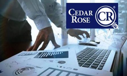 Cedar Rose Creates a Top CRM Data Integration Tool