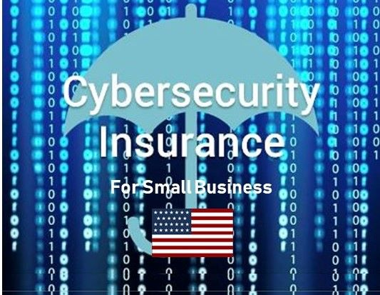 US Cyber Risk Climate:  Cyber Liability Insurance for Small Businesses – Cost, Coverage & More