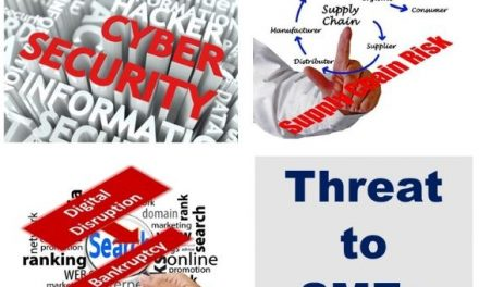 A Cyber Toolkit for Small Business