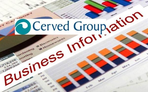 Cerved Group 2019 Revenue Up 13.7% in Preliminary Earnings Report