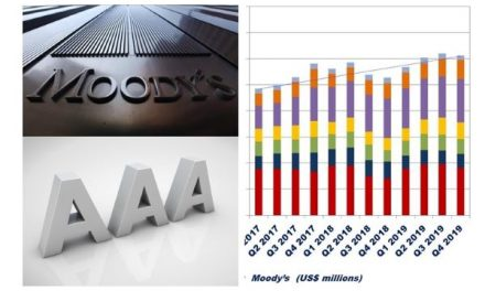 Moody's 2019 Segment Results – for BIIA Members