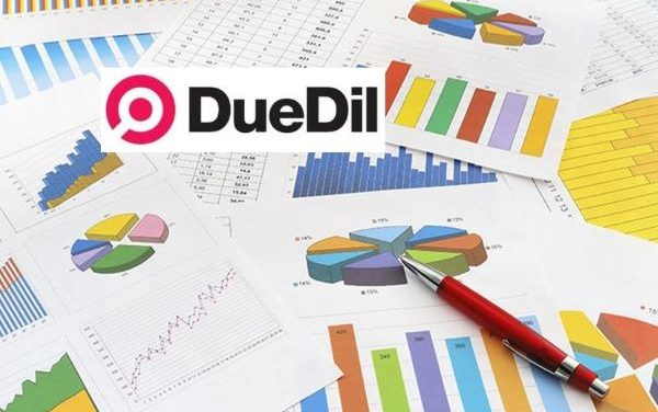 DueDil Launches CBILS Eligibility+ Endpoint to Accelerate Lending to SMEs