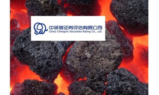 China Credit Climate:  Three Months Ban for China Chengxin International Credit Rating Co. Ltd.