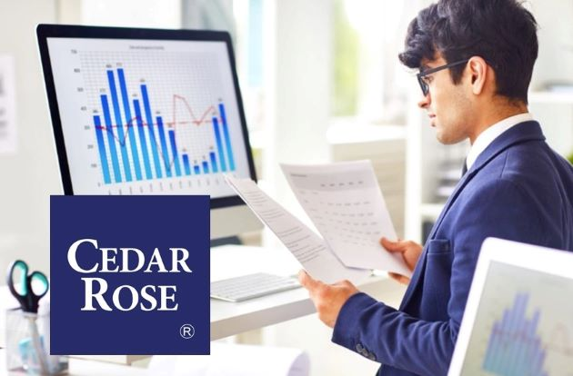 Cedar Rose Assists Clients with Credit Data Integration