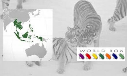 The Southeast Asian Tigers Roar Back