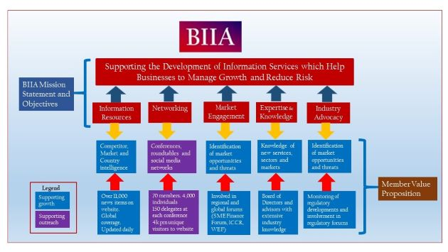 Meet the BIIA Industry Advocacy and the Regulatory Affairs Forum