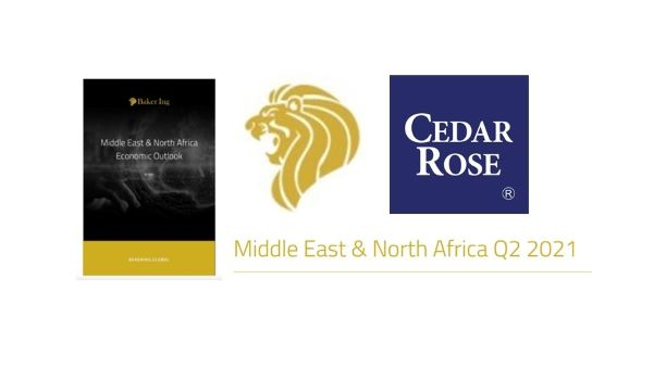 BIIA Member Cedar Rose in Collaboration with Baker Ing to Produce a New Report on the Middle East and North Africa