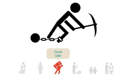 Supply Chain News: Slavery Guidance Issued Ahead of New Law