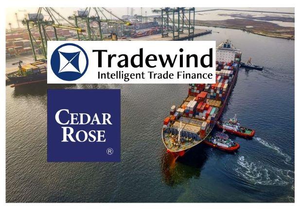 Tradewind Middle East and Cedar Rose in Strategic Partnership